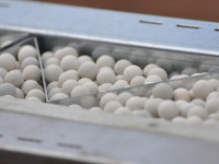 Soft Armor container holding  ceramic pellets to form a ballistic protection barrier. Photo: Protaurius